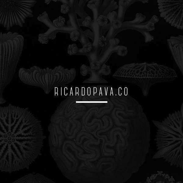 Diseño de web site ricardopava.co